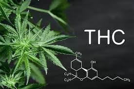 O que é THC e para que serve?